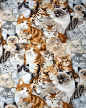 Free Cat Collage phone wallpaper by ryanfrisone