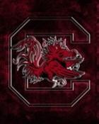 USC Gamecocks wallpaper 1