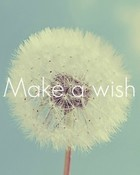 make a wish wallpaper 1