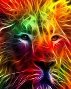 fractel lions