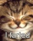 I farted.jpg
