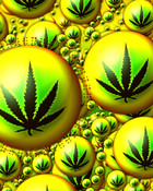 Weed Bubbles wallpaper 1