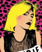Blondie wallpaper 1