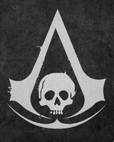 Assassins Creed 4 pirate flag
