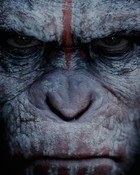 Dawn of the Apes.jpg