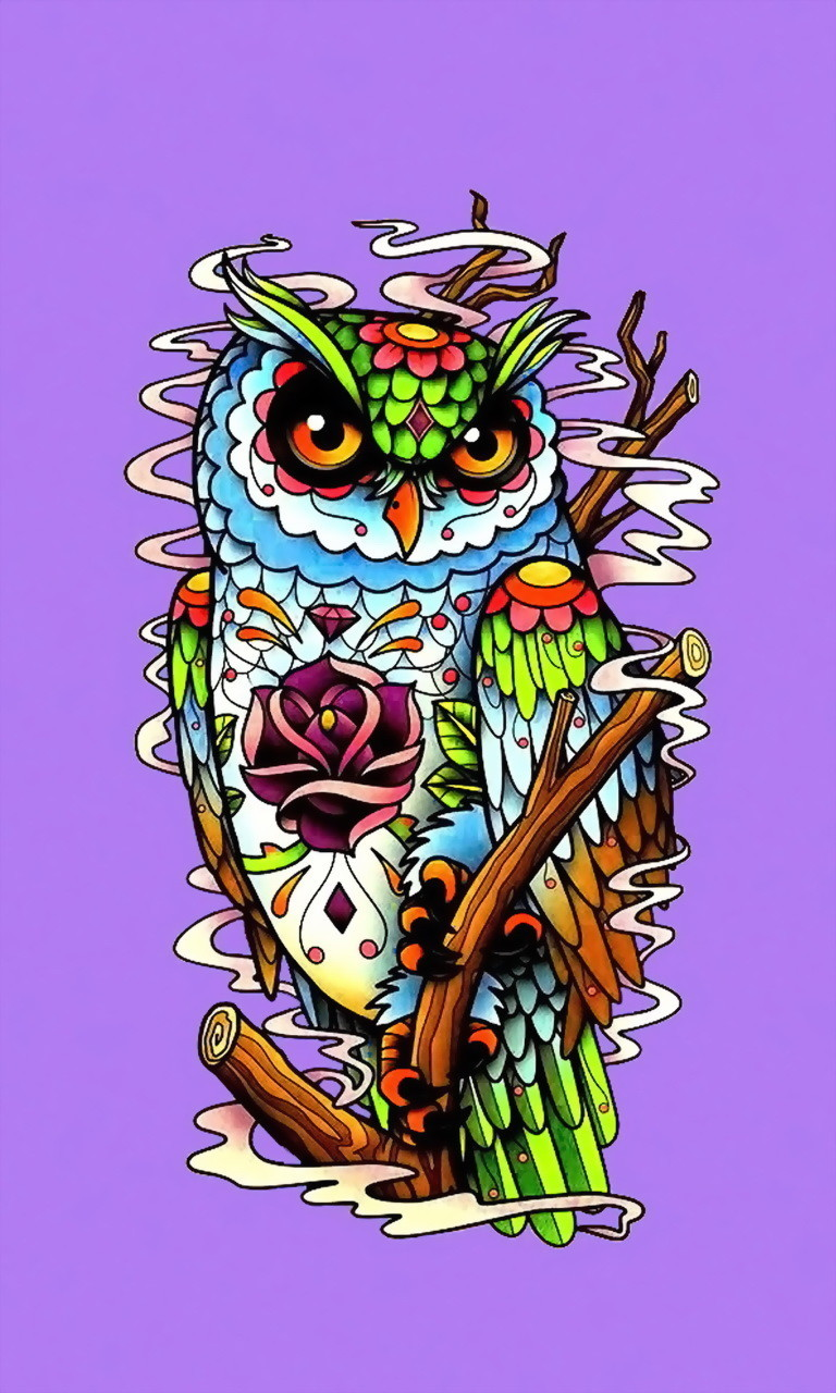Free Colorful Owl.jpg phone wallpaper by twifranny