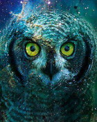 Abstract Owl.jpg wallpaper 1
