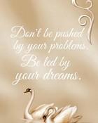 Your Dreams.jpg