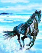 Horse.jpg wallpaper 1