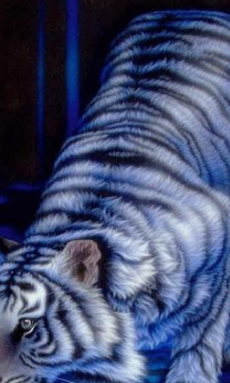 Free White Tiger.jpg phone wallpaper by twifranny