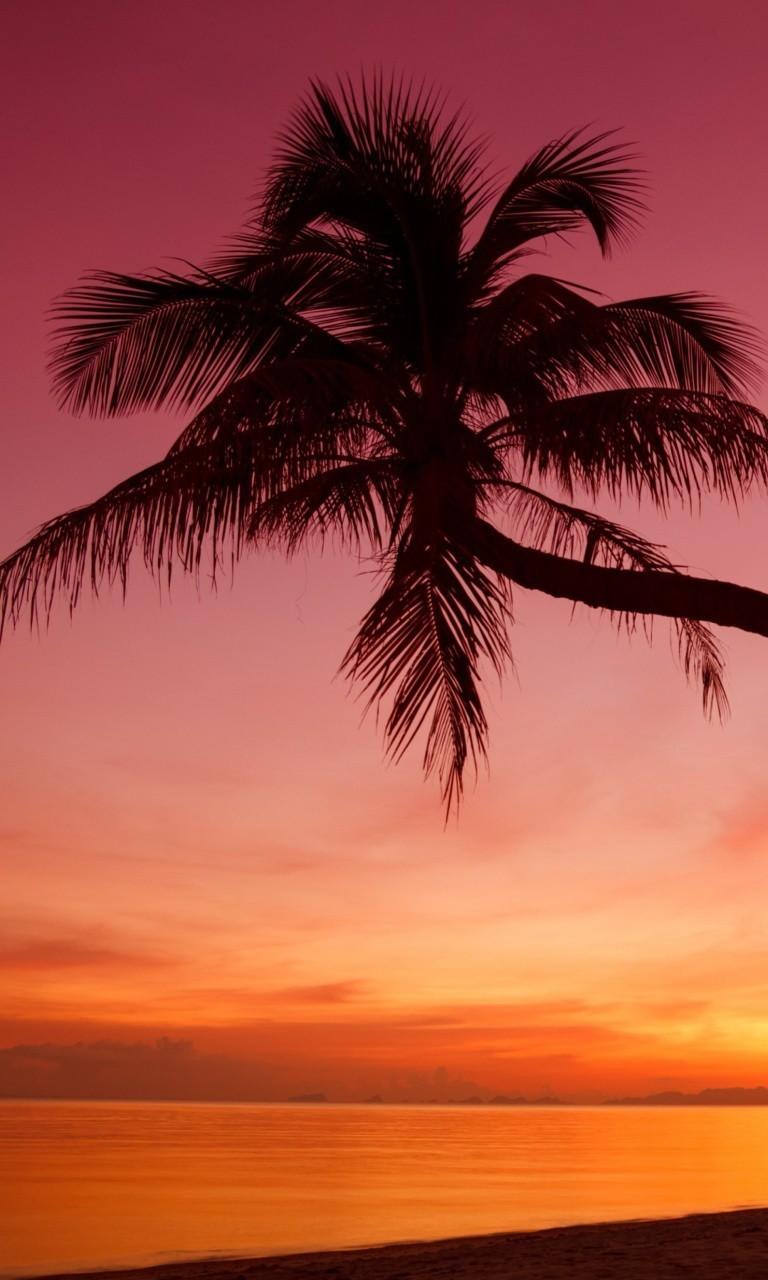 Free Crimson Sunset.jpg phone wallpaper by twifranny