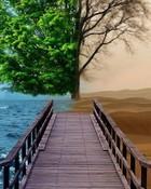 Sea\Desert.jpg wallpaper 1
