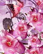 Painted Pink.jpg