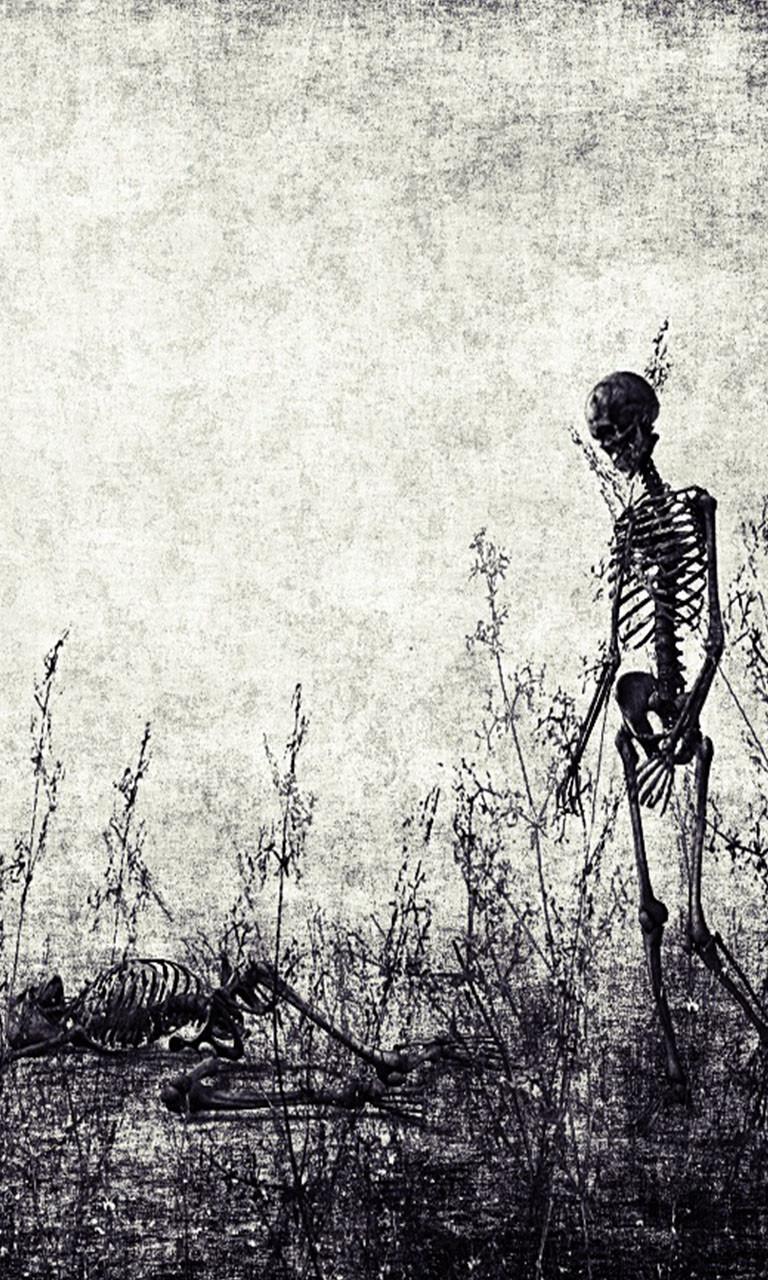 Free Skeleton.jpg phone wallpaper by twifranny