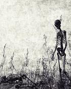 Skeleton.jpg wallpaper 1