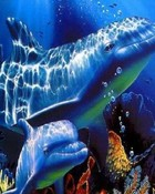 Dolphins - Blue Sea.jpg wallpaper 1