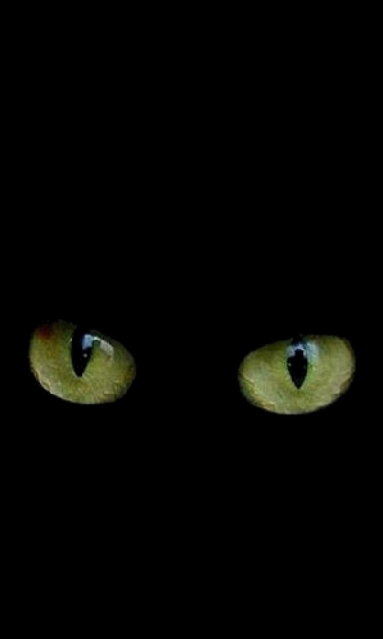 Free Cat Eyes.jpg phone wallpaper by twifranny