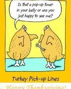 turkeypickuplines.jpg