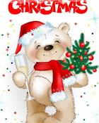 Merry Christmas Teddy.jpg