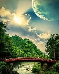 Japanese Forest.jpg