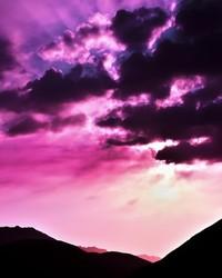 early_purple_breeze-wallpaper-9790277(1).jpg