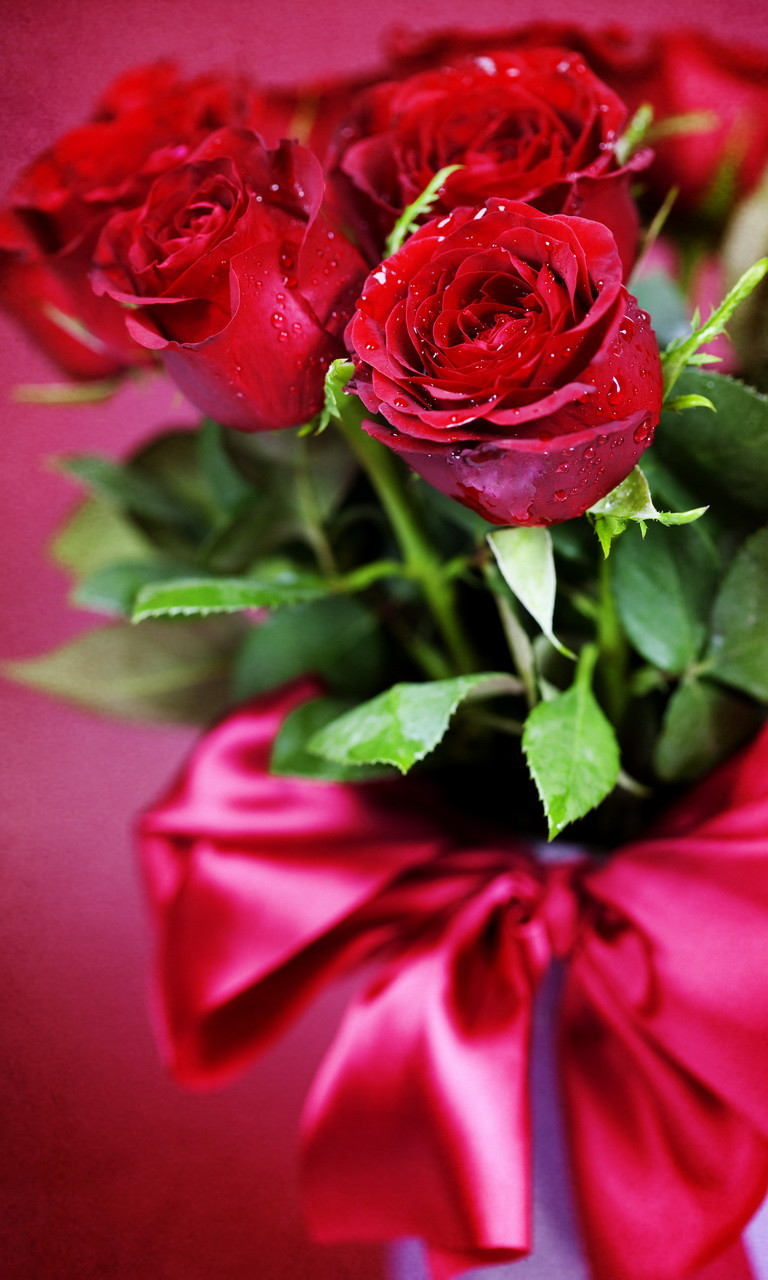 Free Red roses, Valentines day.jpg phone wallpaper by twifranny