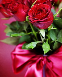 Red roses, Valentine's day.jpg wallpaper 1