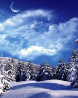 Moonlight Over Snowy Forest