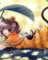 Anime Kittens