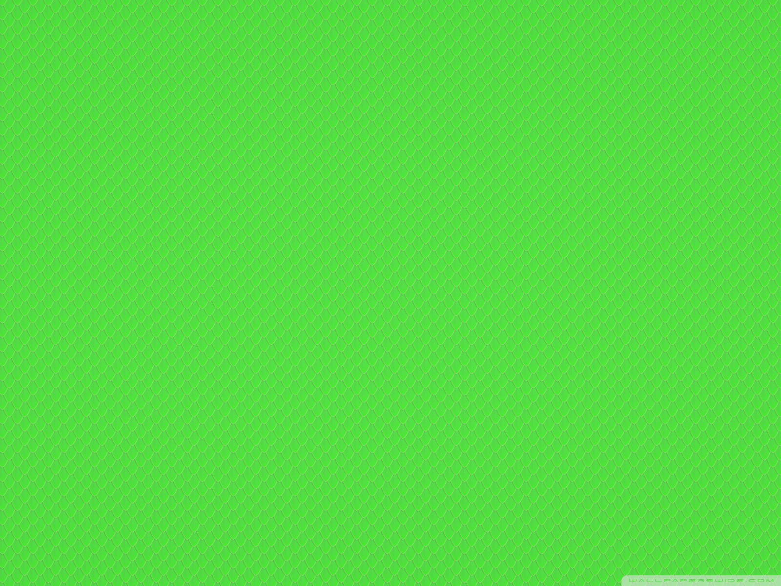 Free Green Snake Scales Texture phone wallpaper by lamism