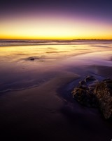 Purple Beach Landscape