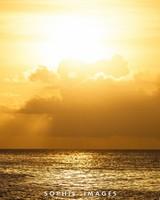 Beautiful Hawaii Scenery