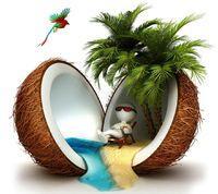 Free coconu.jpg phone wallpaper by redbone48