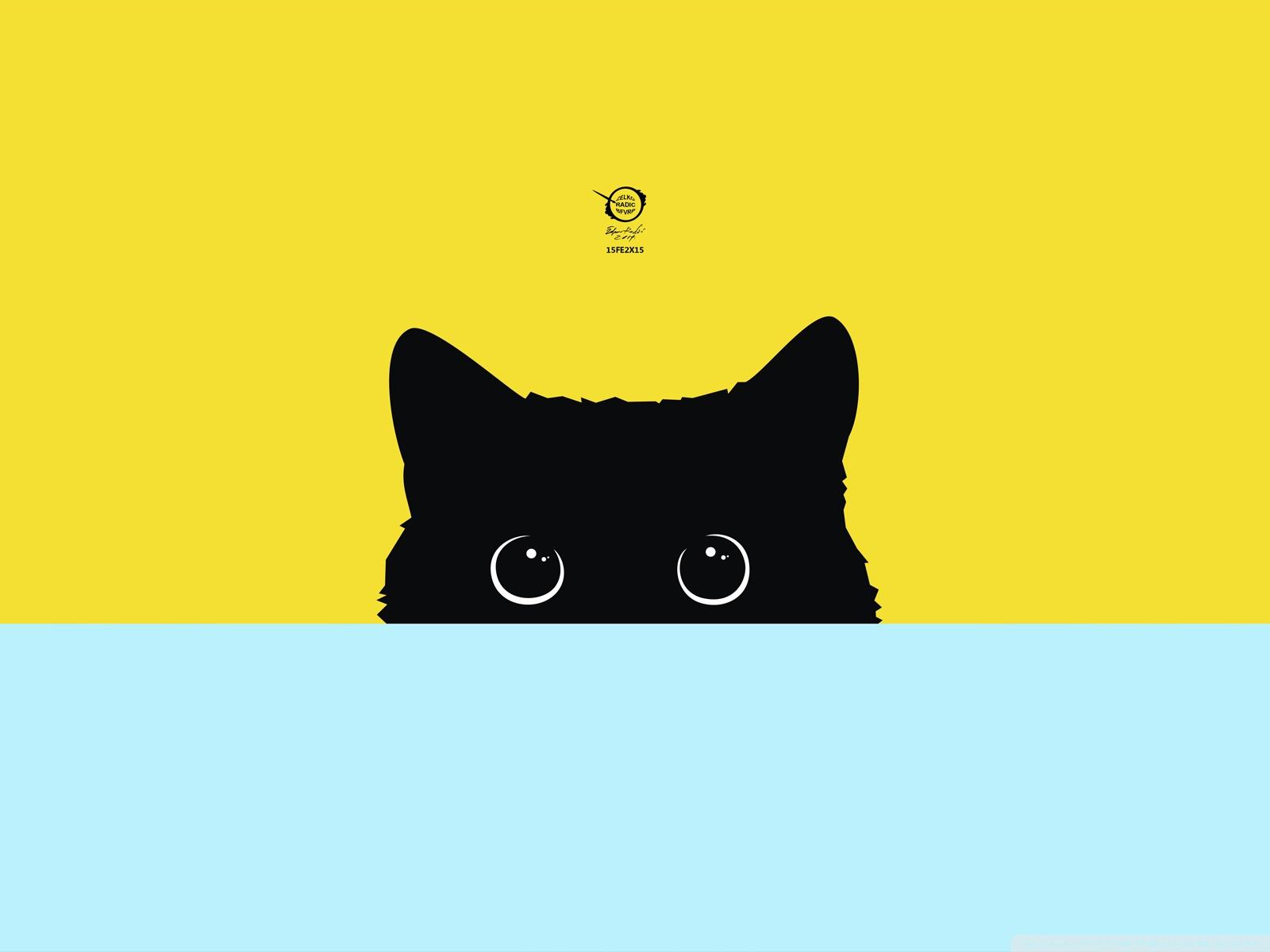 Free Kitty phone wallpaper by nascimento1