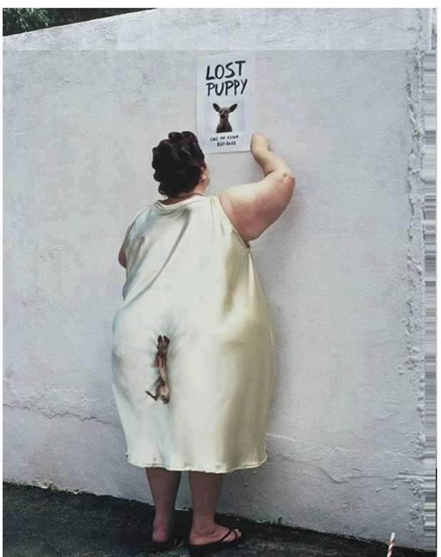 Free LOST DOG.jpg phone wallpaper by redbone48