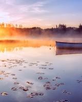 A Blazing Sunrise