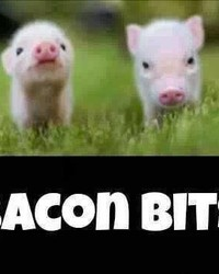 BACON BITS.jpg