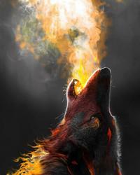 wolf-wallpaper-10766123(1).jpg wallpaper 1