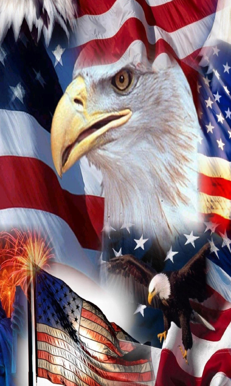 Free usa_flag_eagle-wallpaper-10731302(1).jpg phone wallpaper by twifranny