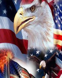 usa_flag_eagle-wallpaper-10731302(1).jpg