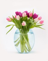 Easter Tulips Flowers Bouquet in a Vase