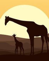 Mother and Baby Giraffe, African Safari