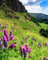 Balkan Mountains - Bulgaria