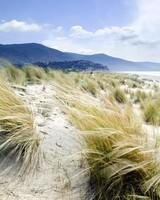 Italy Sunny Sea Shores