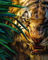 Jungle Book Shere Khan