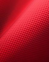 Red Nylon Canvas Fabric