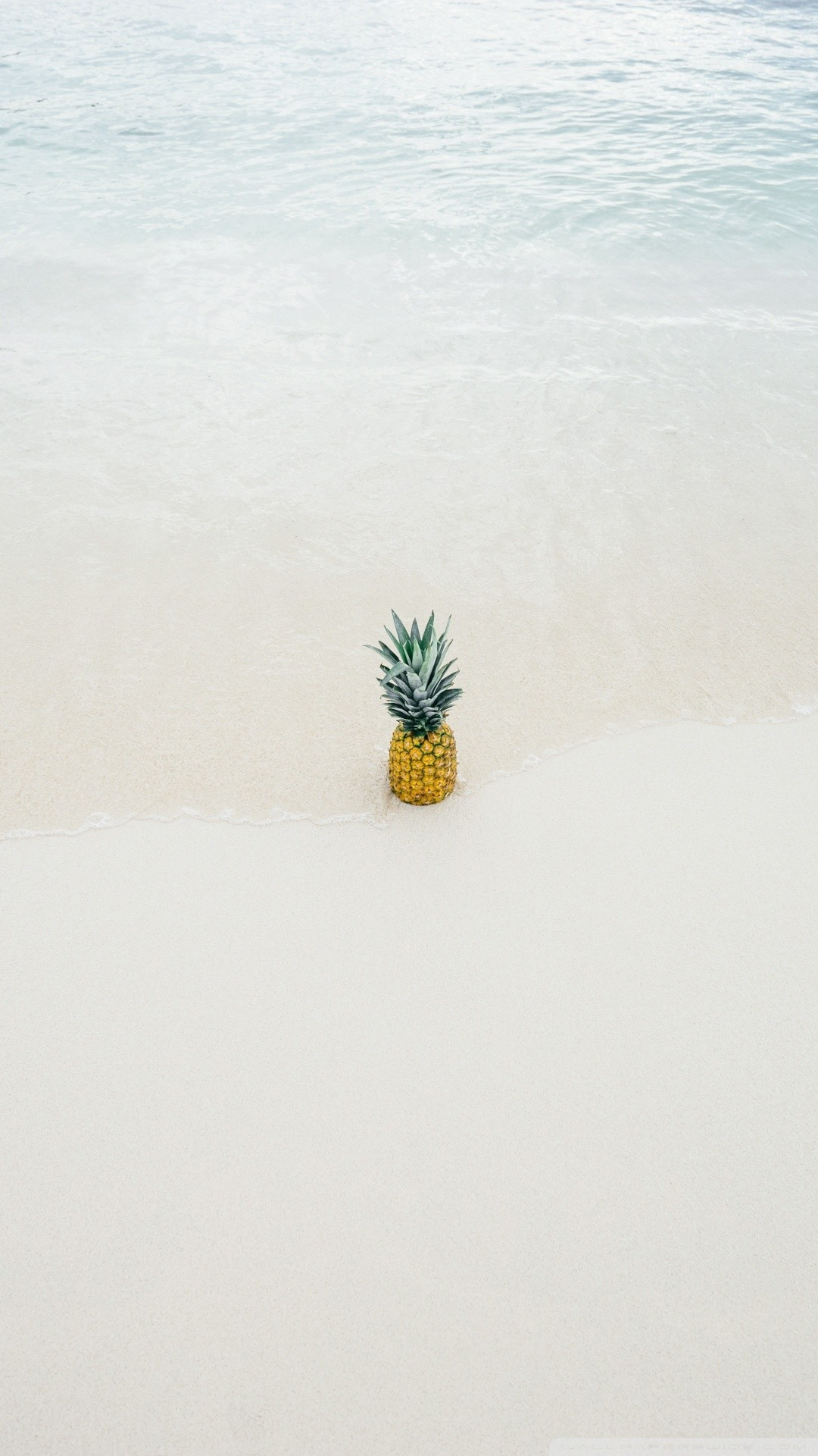 Free Pineapple Summer phone wallpaper by staceylish