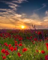 Early morning in Bulgaria