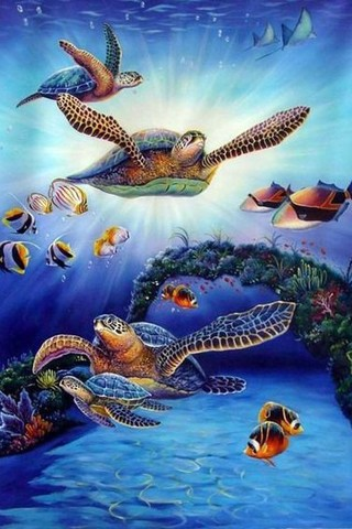 Free Animals - Sea Turtles - The Great Barrier Reef phone wallpaper by epictones