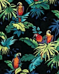 Tropical Pattern - Macaws & Palms